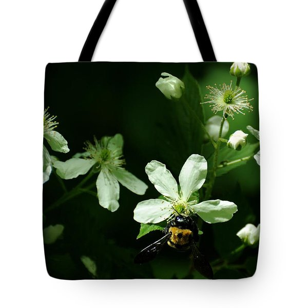 Swamp Rose With Carpenter Bee Tote Bag by Rebecca Sherman