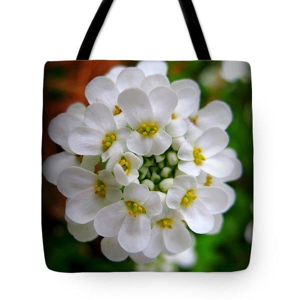 Sweet Alyssum Tote Bag by Patti Whitten