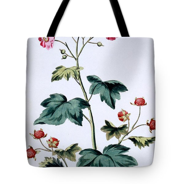 Sweet Canada Raspberry Tote Bag by John Edwards