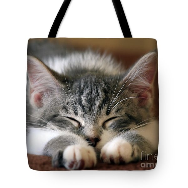 Sweet Dreams Tote Bag by Teresa Zieba