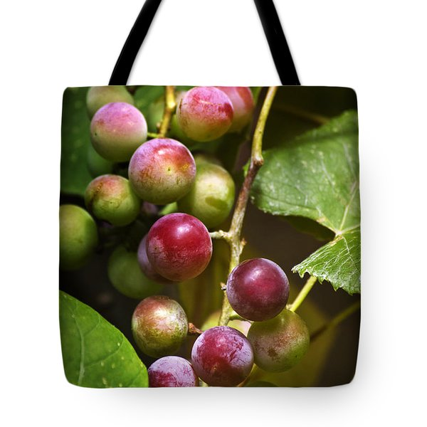 Sweet Grapes Tote Bag by Christina Rollo