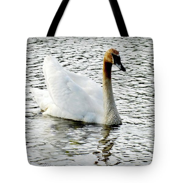 Sweet Swan Swimming Tote Bag by Danielle  Parent