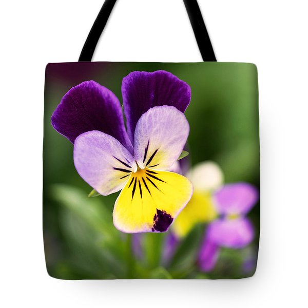 Sweet Violet Tote Bag by Rona Black