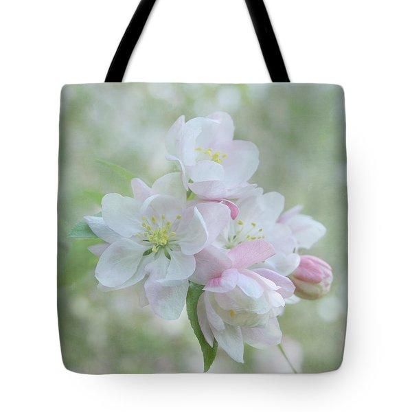 Sweetness Tote Bag by Kim Hojnacki