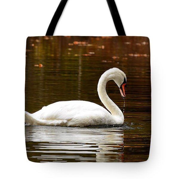 Swim And Grace Tote Bag by Lourry Legarde