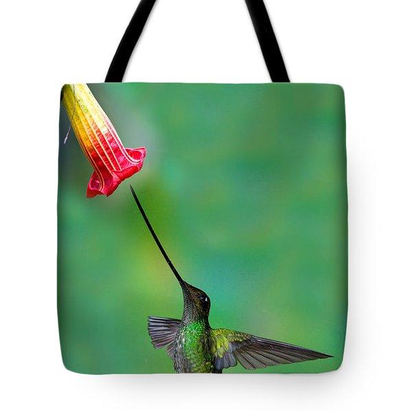Sword-billed Hummingbird Tote Bag by Anthony Mercieca