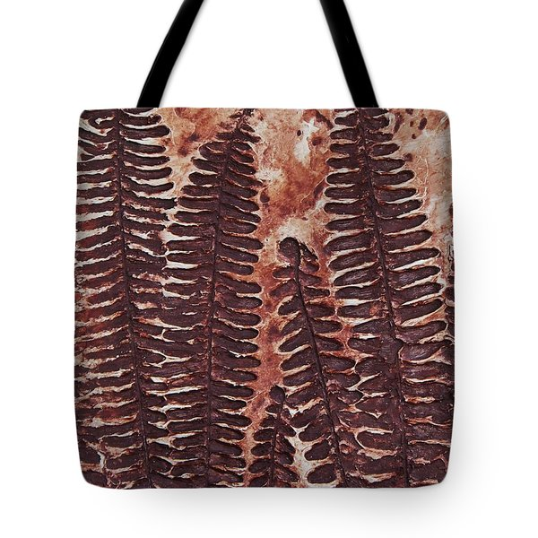 Sword Fern Fossil Tote Bag by Katherine Young-Beck