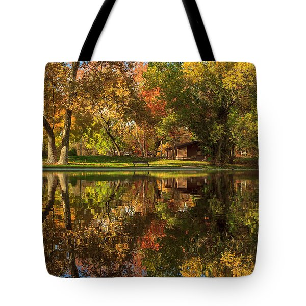 Sycamore Reflections Tote Bag by James Eddy