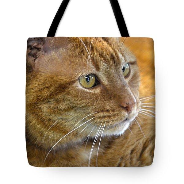 Tabby Cat Portrait Tote Bag by Sandi OReilly