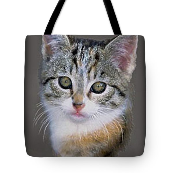 Tabby  Kitten Tote Bag by  Bob and Nadine Johnston