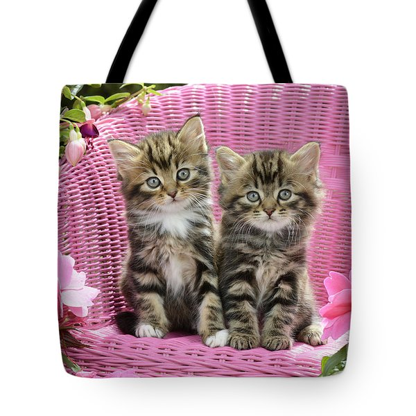 Tabby Kittens Tote Bag by Greg Cuddiford