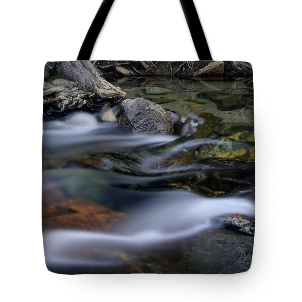 Tahoe Eagle River Tote Bag by Dave Dilli