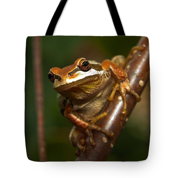 Take the Leap Tote Bag by Randy Hall