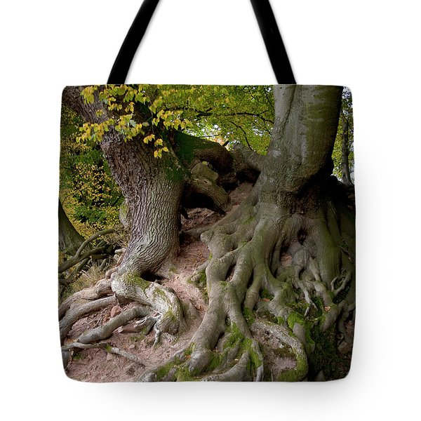 Taking Root Tote Bag by Heiko Koehrer-Wagner