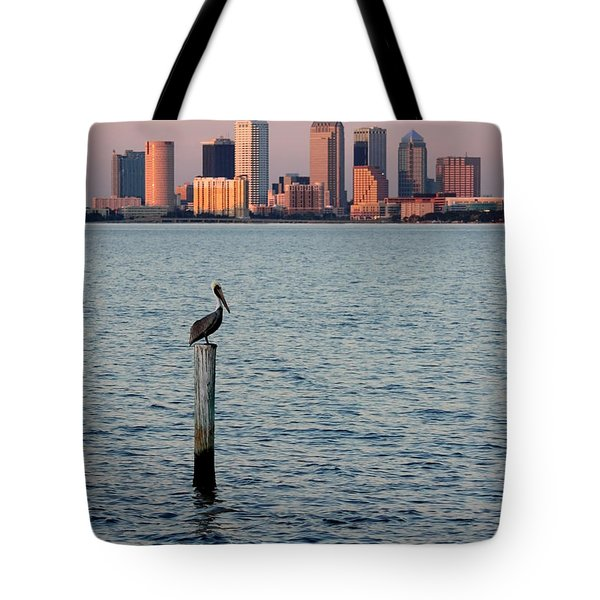 Tampa Skyline And Pelican Tote Bag by Carol Groenen