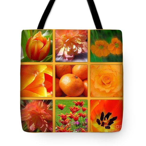 Tangerine Dream Window Tote Bag by Joan-Violet Stretch