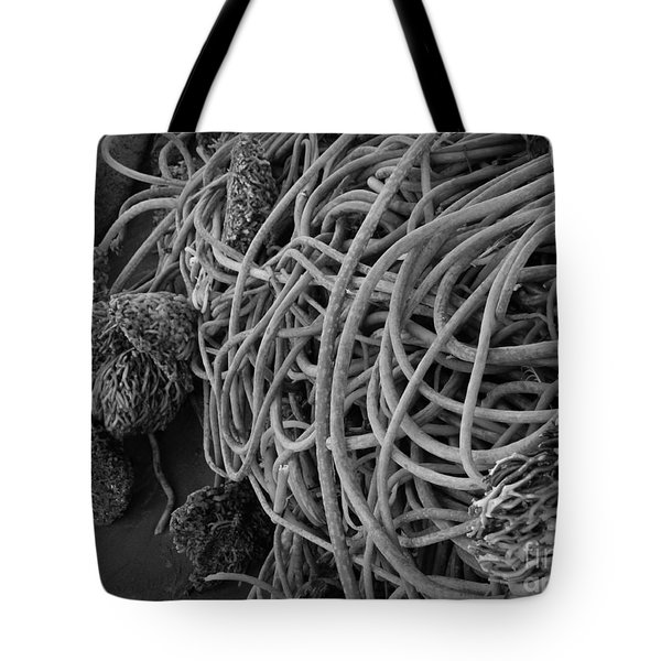 Tangles Of Seaweed 2 Bw Tote Bag by Chalet Roome-Rigdon