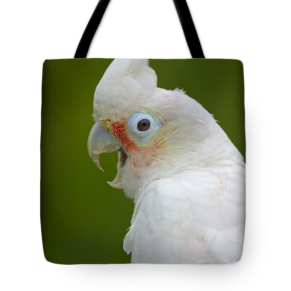 Tanimbar Correla Tote Bag by Tony Beck