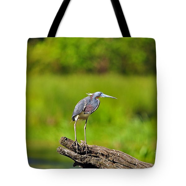 Tantalizing Tricolored Tote Bag by Al Powell Photography USA
