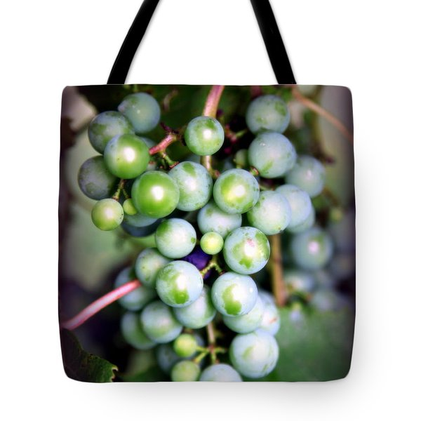 Taste Of Nature Tote Bag by Karen Wiles