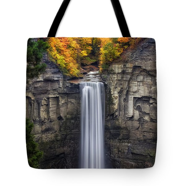 Taughannock Tote Bag by Mark Papke