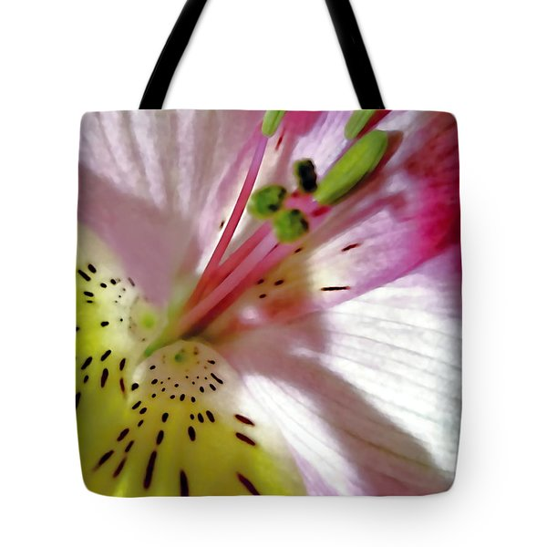 Tender Lily With Shadow  Tote Bag by Danielle  Parent