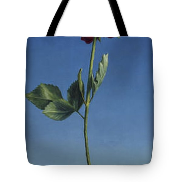 Tenuous Still-Life 1 Tote Bag by James W Johnson