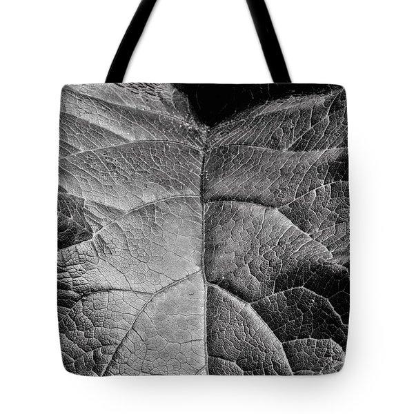 Terrestrial  Tote Bag by JC Findley
