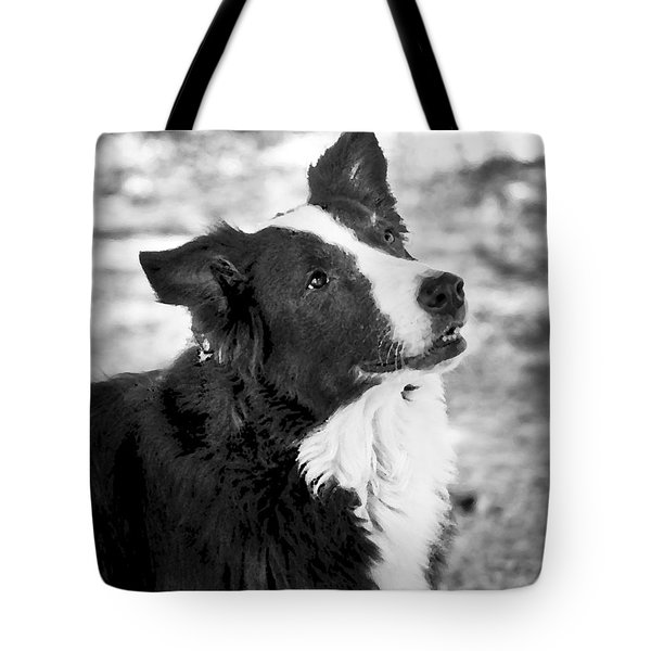 Tessie 7 Tote Bag by Rich Franco