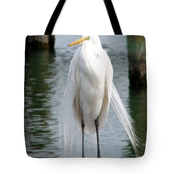 Texas Great White Egret Tote Bag by Linda Cox