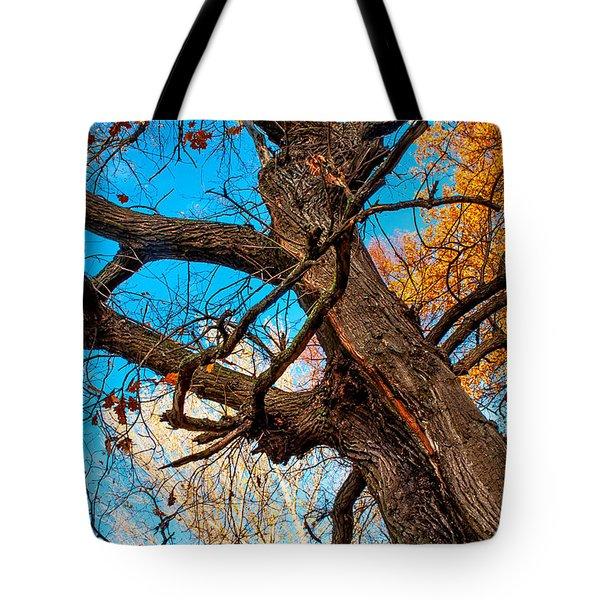 Texture Of The Bark. Old Oak Tree Tote Bag by Jenny Rainbow