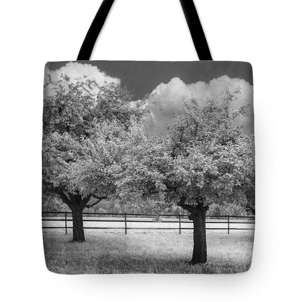 The Apple Orchard Tote Bag by Debra and Dave Vanderlaan