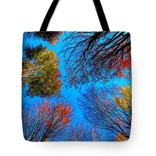 The Autumn Leaves At Potato Creek Tote Bag by Tina M Wenger