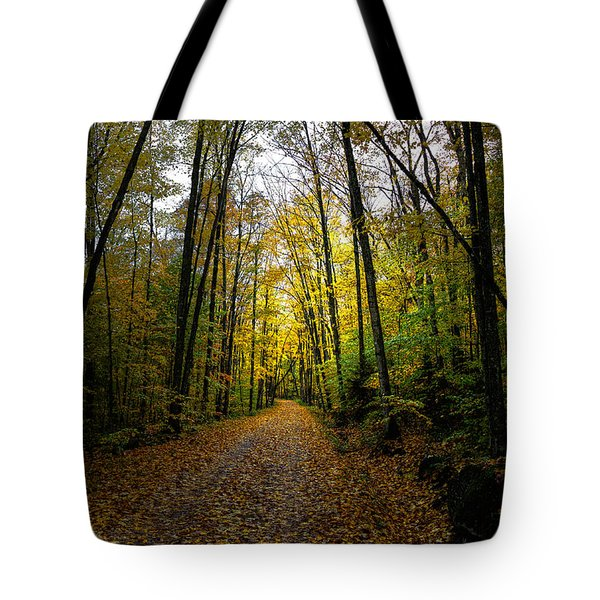 The Back Roads of Autumn Tote Bag by David Patterson