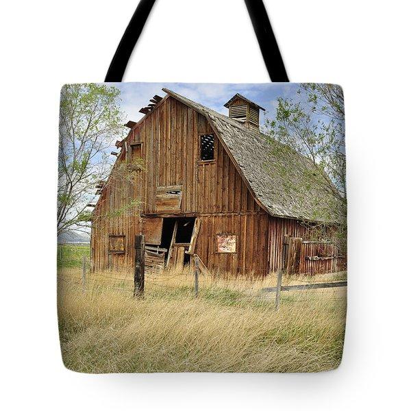 the Barn  Tote Bag by Fran Riley