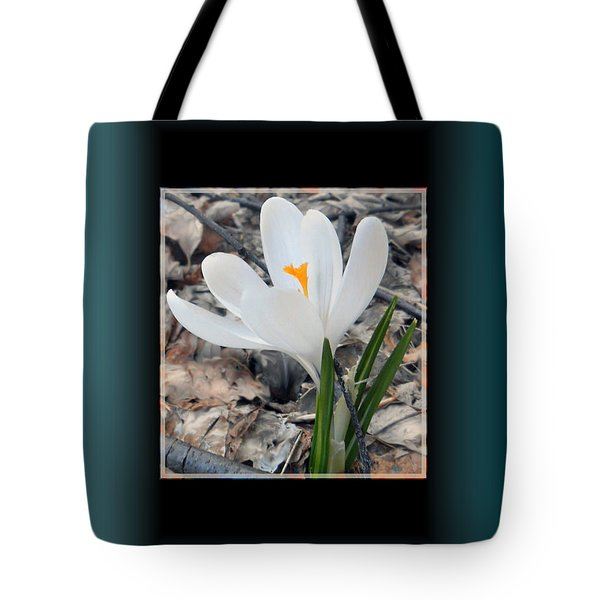 The Beautiful Single Crocus Tote Bag by Patricia Keller