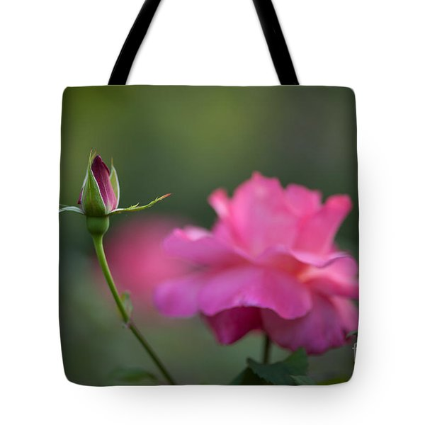 The Beauty And The Promise Tote Bag by Mike Reid