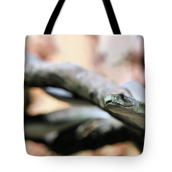 The Black Mamba Tote Bag by JC Findley