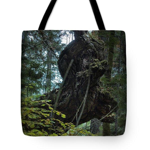 The Centaur Tote Bag by Belinda Greb