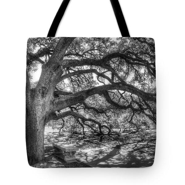 The Century Oak Tote Bag by Scott Norris