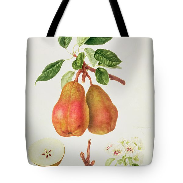 The Chaumontelle Pear Tote Bag by William Hooker