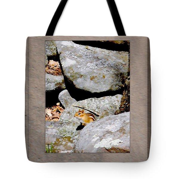 The Chipmunk Tote Bag by Patricia Keller