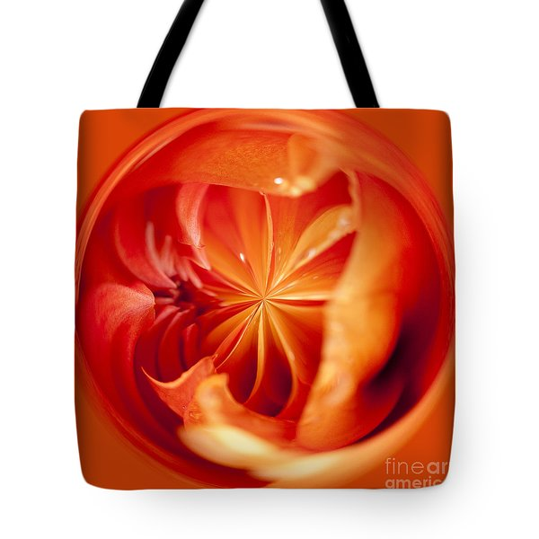The Circular World Of David Howard Tote Bag by Anne Gilbert