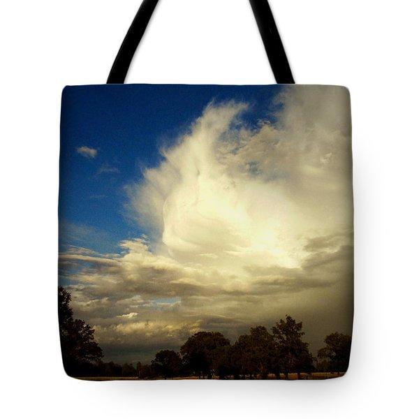 The Cloud - Horizontal Tote Bag by Joyce Dickens