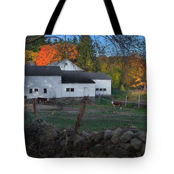 The Connecticut Outback Tote Bag by Bill  Wakeley
