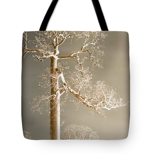 The Dreaming Tree Tote Bag by Holly Kempe