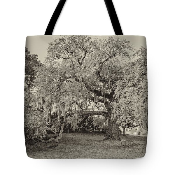 The Dueling Oak - A Place For Dying Bw Tote Bag by Steve Harrington