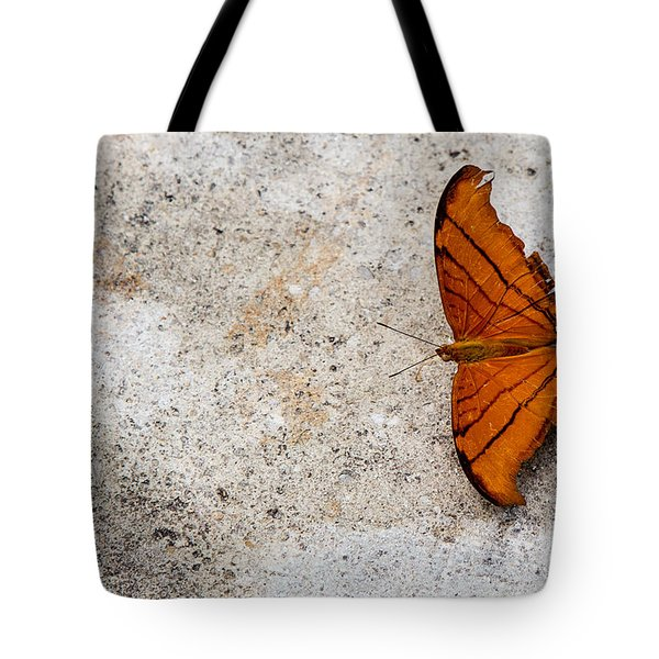 The Elusive Butterfly  Tote Bag by Rene Triay Photography