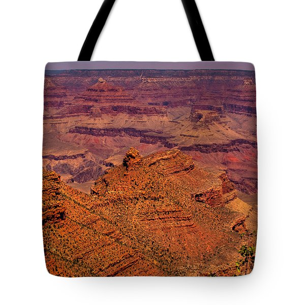 The Grand Canyon Iv Tote Bag by David Patterson