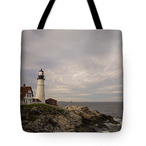 The Head Light Tote Bag by Karol Livote